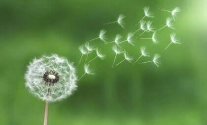 De wet van de minste inspanning: met stress omgaan