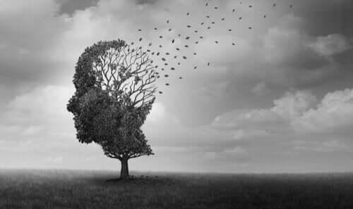 Een afbeelding van een boom met het uiterlijk van een gezicht