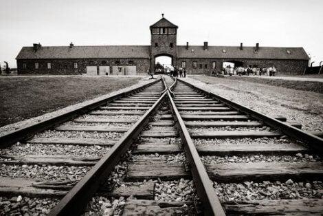 Alice moest naar een concentratiekamp