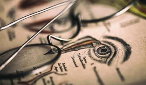 Illustratie van een oog