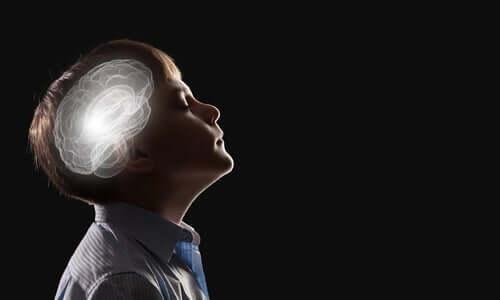 De neurobiologie van de intuïtie
