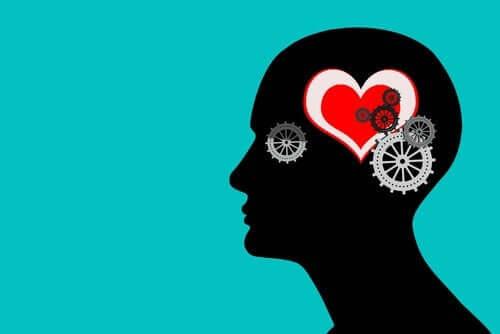 Hoe werken je emoties