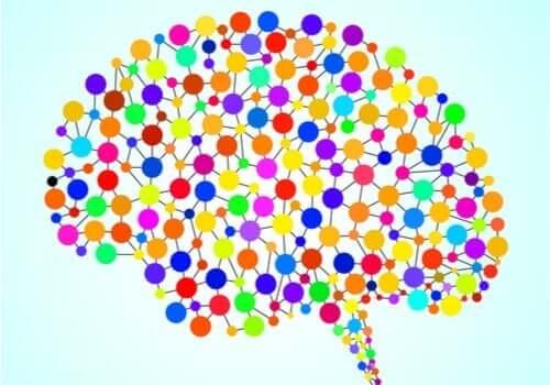 De 97 voorheen onbekende gebieden van de hersenen
