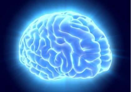 Een afbeelding van oplichtende hersenen