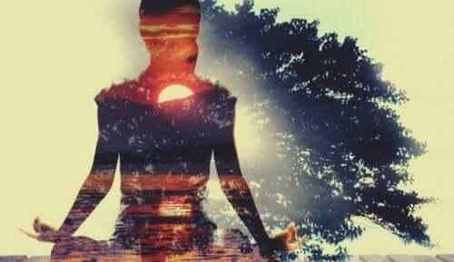Het silhouette van een mediterende vrouw