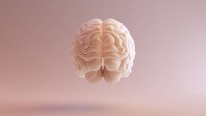 Een afbeelding van een zwevende hersenen