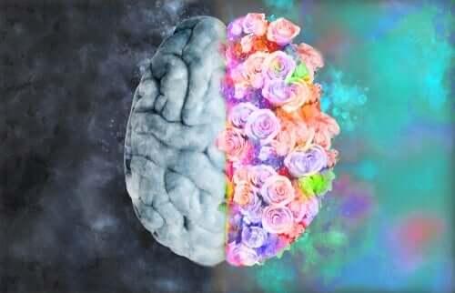 Neuro-esthetica, ontmoeting tussen neurologie en kunst