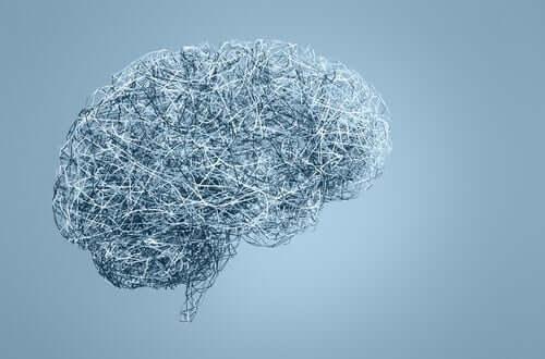 Hersenen als staaldraad