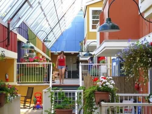 Een cohousing gemeenschap met veel planten