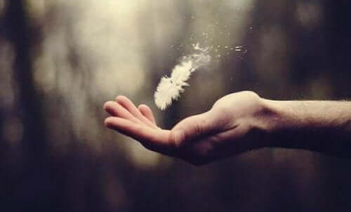 Hand met veertje om kwetsbaarheid weer te geven