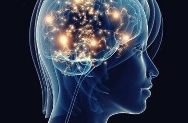 Onbehandelde depressie en het effect op je hersenen
