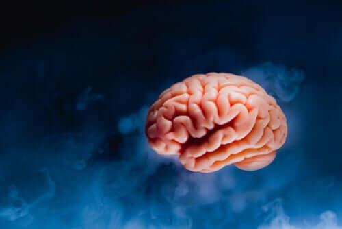 Zwevende hersenen tegen een blauwe achtergrond