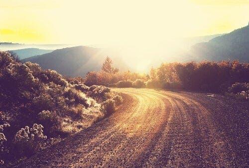Een weg die wordt verlicht door de zon