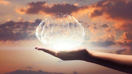De hersenen verlicht in een open hand