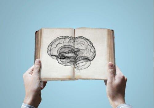 Neurowetenschap: de erfelijkheid van kennis