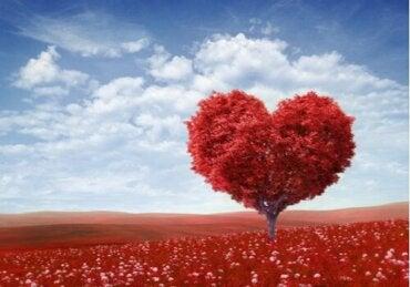 Valentijnsdag: wie was de echte Sint-Valentijn?