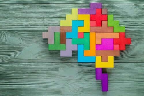 Wat zegt de neurowetenschap