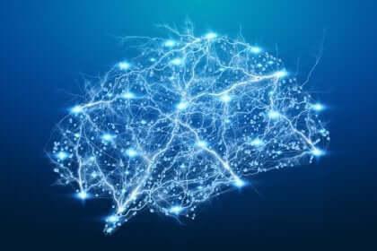 De elektrische activiteit in de hersenen