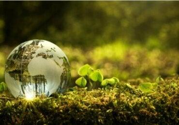 Hoe kan ik bijdragen aan het verbeteren van het milieu?