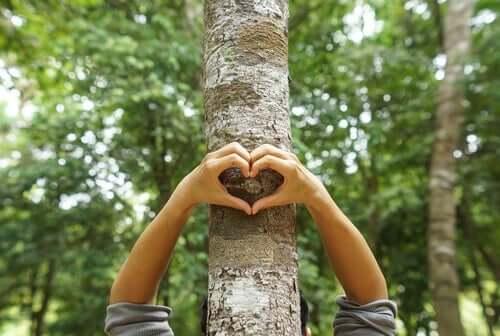 Iemand maakt met zijn handen een hartje tegen een boom
