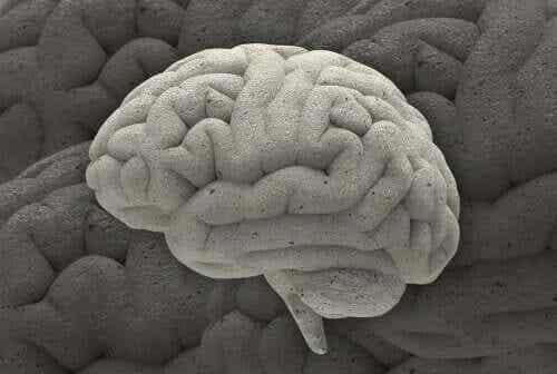 Drie fascinerende neurowetenschappelijke gevallen