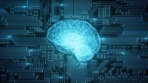 Hoe digitalisering de hersenen beïnvloedt