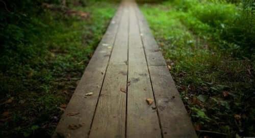 Een houten pad in het gras