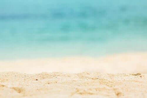 Een strand met de zee op de achtergrond