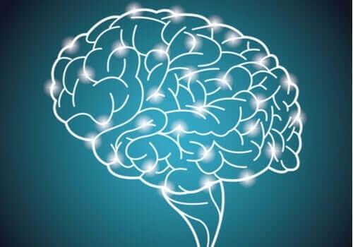 's Werelds grootste intelligentie-experiment