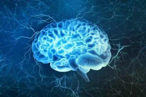 Slaapcycli: begrijp je hersenen om beter te slapen