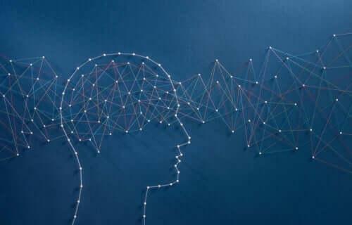 Het grootste intelligentie-experiment ter wereld