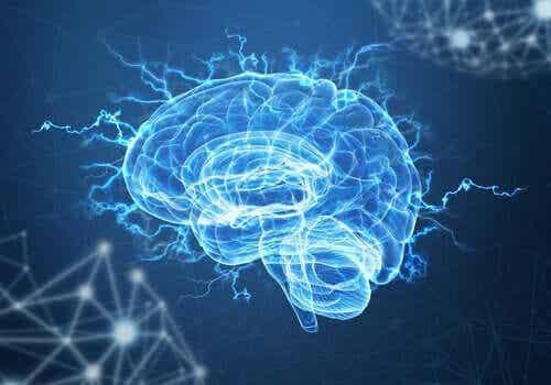 Kunnen de hersenen trauma overwinnen?