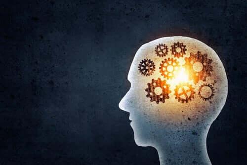 Hoe werken de mechanismen in de hersenen