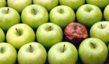 De rotte-appel-theorie op de werkplek