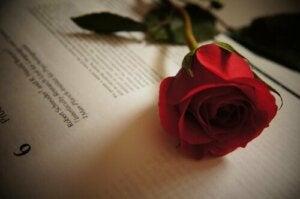 Tirso de Molina - vijf citaten over liefde