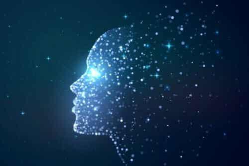 Is bewustzijn een product van de hersenen?