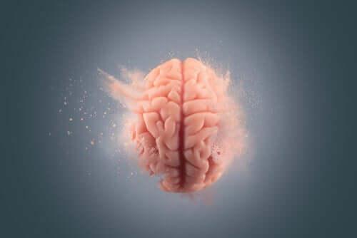 De effecten van cocaïne op de hersenen