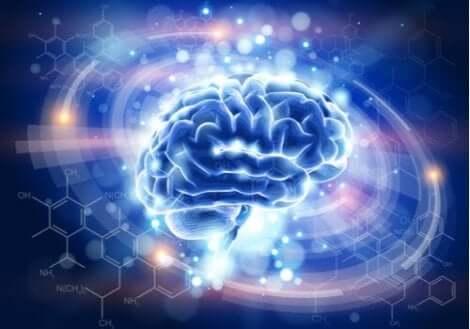 Een afbeelding van verlichte hersenen