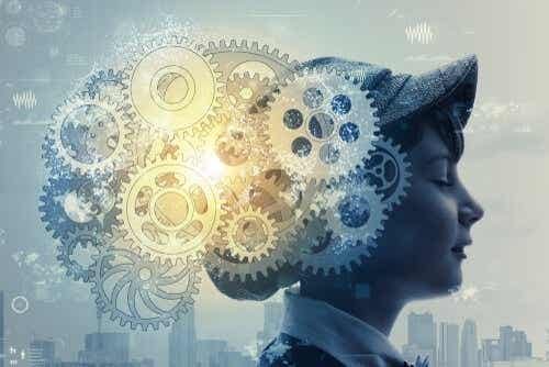 Hoe zithet mechanisme van de hersenen in elkaar