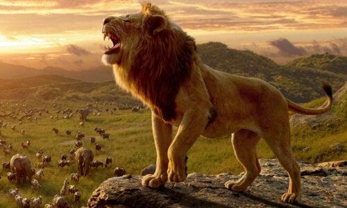 Een afbeelding uit de Lion King remake