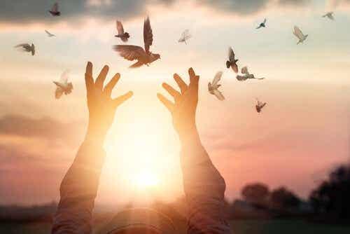 Een persoon houdt zijn of haar handen omhoog naar vliegende vogels