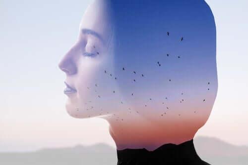 De effecten van bewust ademen op je hersenen