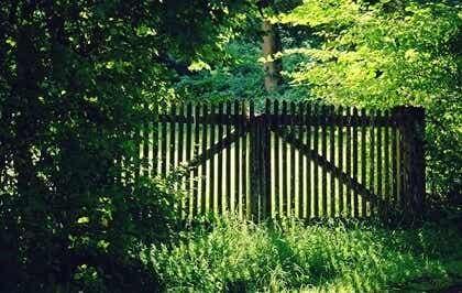 Een hek in een tuin