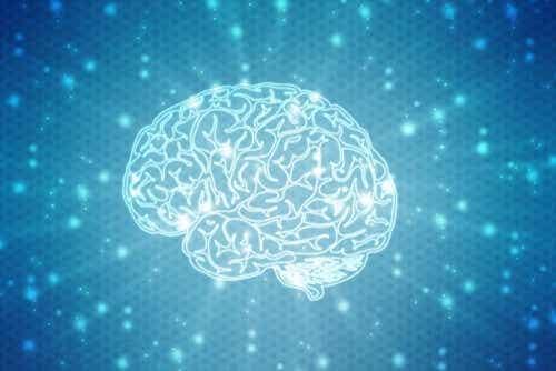Hoe werkt neuropsychologische revalidatie