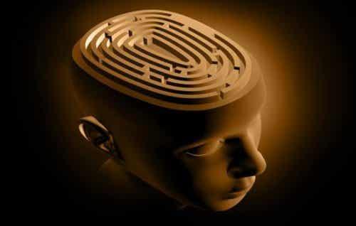 De hersenen afgebeeld als een doolhof op het hoofd van een persoon