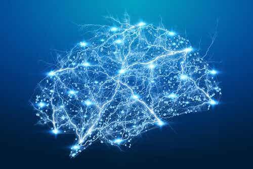 De hersenen afgebeeld door verlichte lijnen en punten