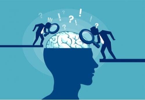 Neuronale synchronisatie: het orkest van je hersenen