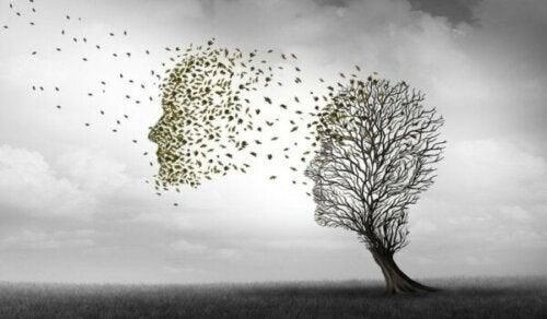 De verschillen tussen de ziekte van Alzheimer en dementie