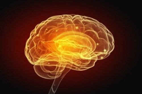 Kunstmatige intelligentie: kunnen we binnenkort schrijven met gedachten?