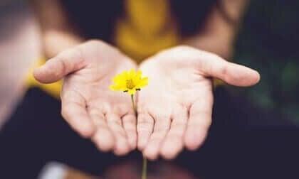 Wat is posttraumatische groei door pijnlijke ervaringen?